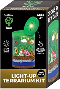 Terrarium Kit for Kids LED Light on Lid - Crafts & Arts Create Customized Mini Garden for Children - Science Kit Gifts for Boys & Girls - Kids Birthday Gifts for Age 3-12 Year Old - Kids Toys
