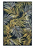 Loloi Rugs HCATHCF05NVML5275 Catalina Collection Indoor/Outdoor Area Rug, 5-Feet 2-Inch by 7-Feet 5-Inch, Navy/Multicolor Review