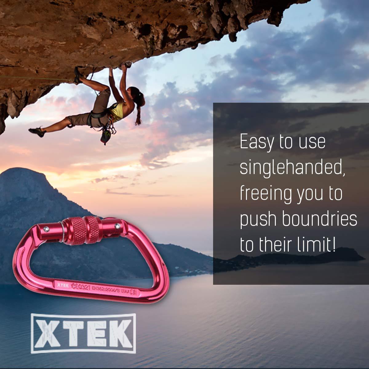 Keys Rock Climbing Carabiner Dog Leashes Light Weight Heavy Duty Carabiner Climbing 4 23kN // 5171lb Aluminum Locking Carabiner Clip for Tree Climbing UIAA /& CE Rated
