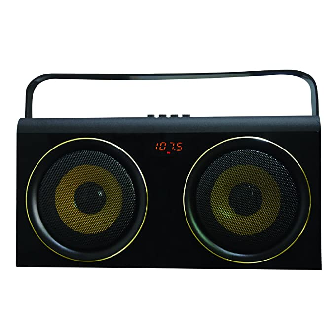 Review Portable Speaker System With