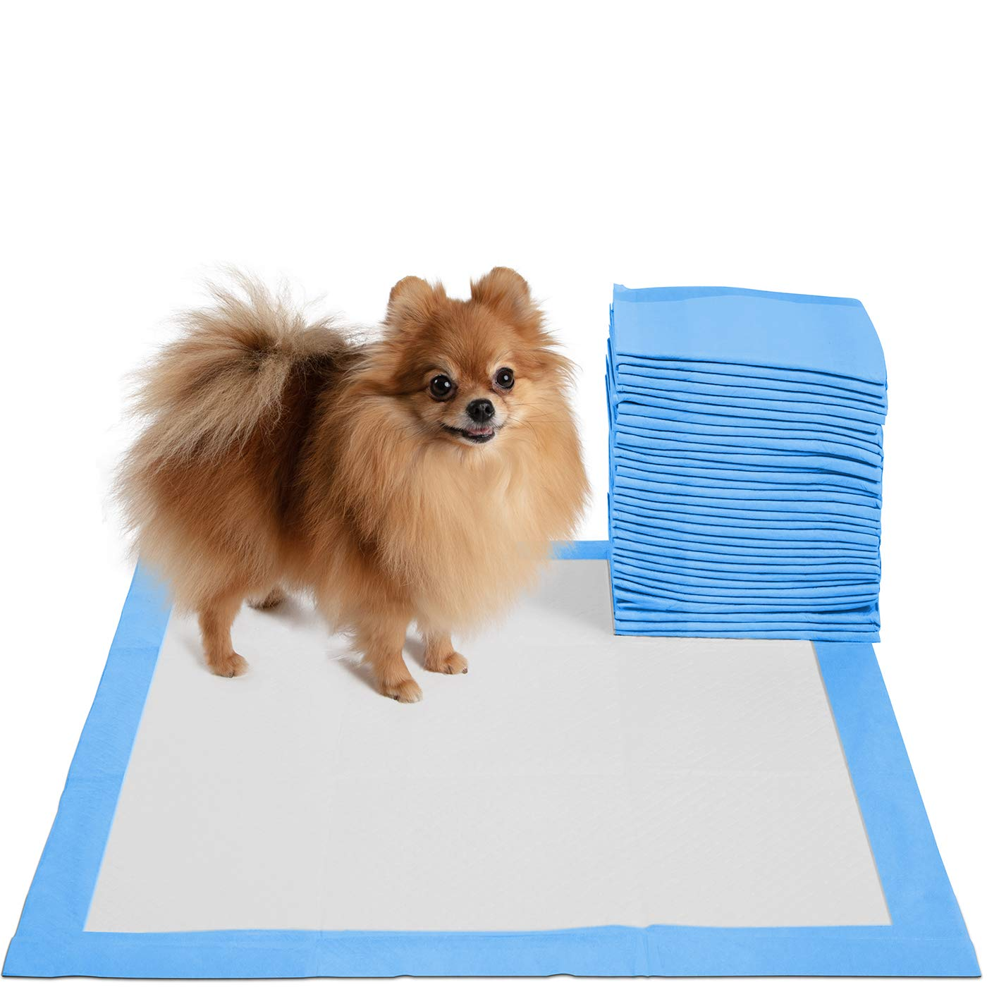 20 x 20 Pet Training Potty Pee Pads for Dogs and Cats – 30, 100, and 150 Count (30 Count)