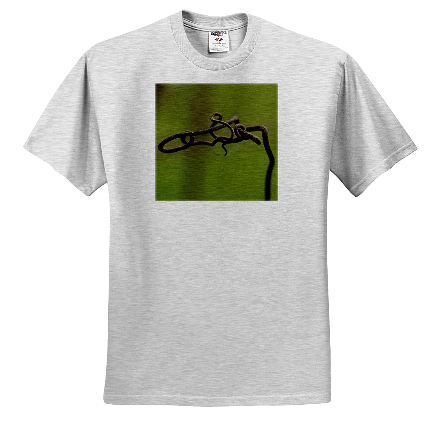 Nature Macro Photo of a Twisted Grapevine Against a Green Bokeh Background 3dRose Stamp City - T-Shirts