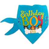 Dog Birthday Bandana Boy Blue Pet Scarf Neckerchief Medium Large XLarge Cool Novelty Adjustable Reversible Fashion Accessory For Puppy