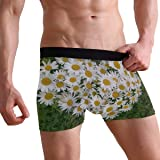 Mens Boxer Briefs Heart of Flowers White Daisy Soft Bikini Breathable Underpants Stretch Low Rise Trunks Underwear for Men Boys