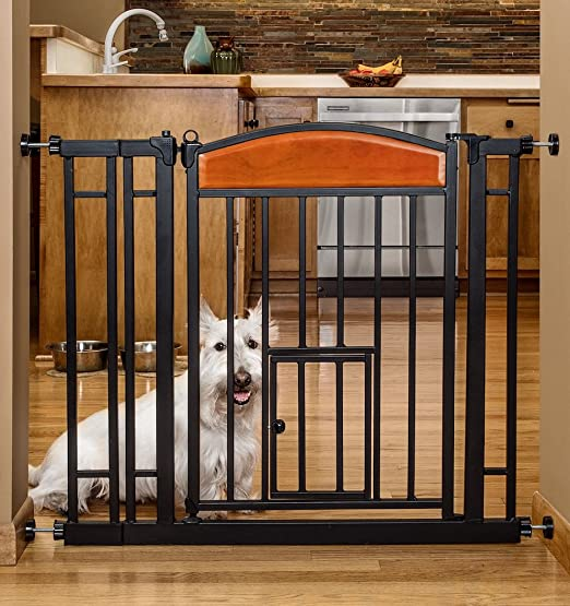 Amazoncom Carlson Pet Products Design Studio Home Decor Walk