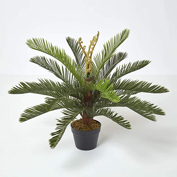 Homescapes Sago Palm Tree Artificial Cycas Plant Home Office Indoor Decorative Plant Green 75 Cm 2 5 Ft With Black Pot Amazon Co Uk Kitchen Home