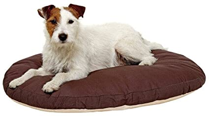 Karlie Cojín ovalado perro: Amazon.es: Productos para mascotas