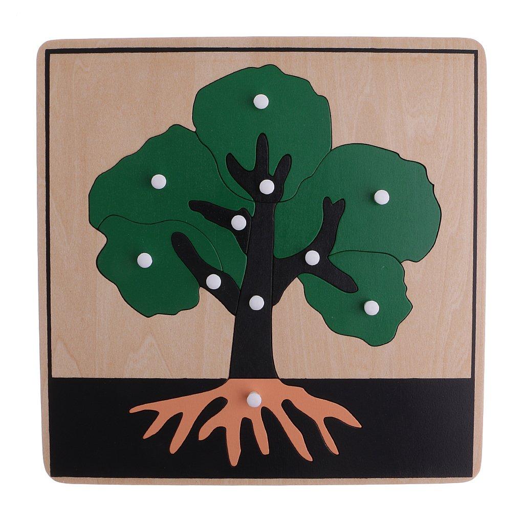 Sharplace 8 Montessori Montessori Montessori Tier Pflanze Knopf Puzzles für Kinder 504ffc