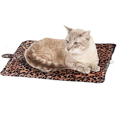 Cama para Gatos y Perros pequeños - 55 x 45 cm - Cama Térmica para Mascostas