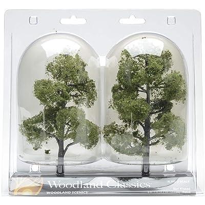 Sun Kissed Deciduous Trees 6 To 7 2/Pkg-: Toys & Games