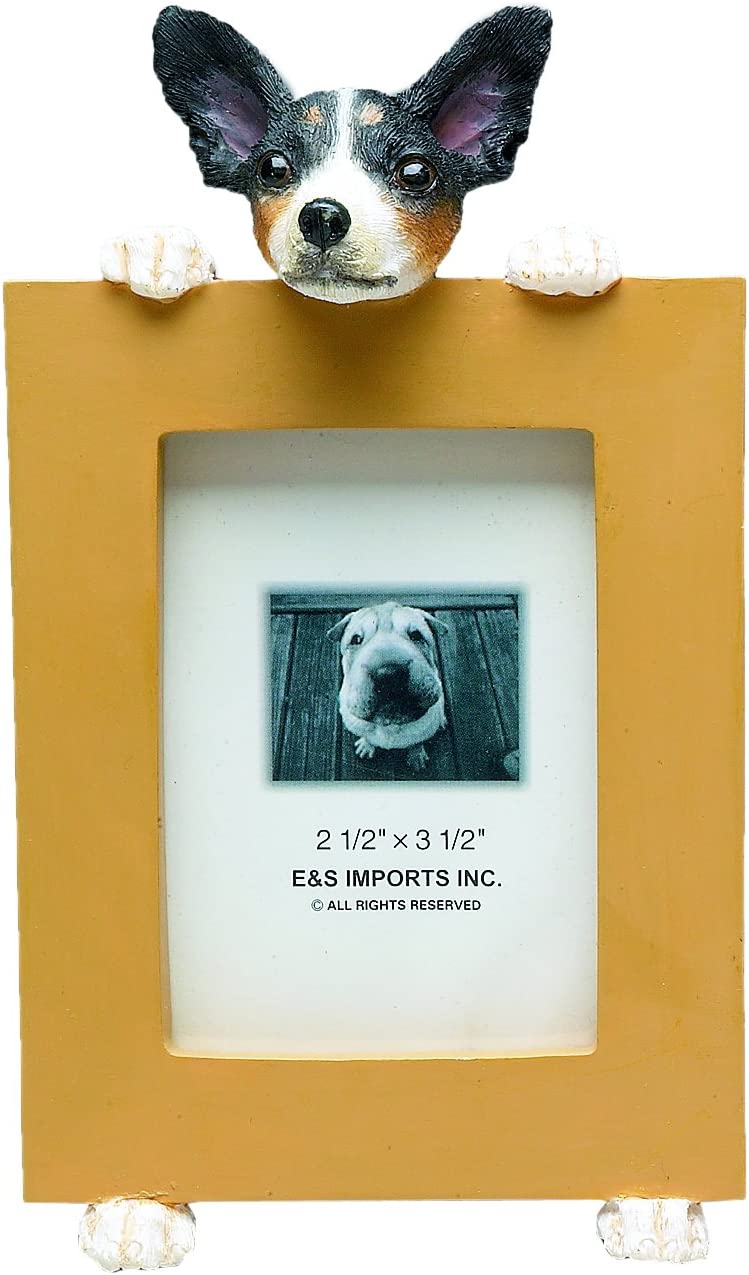 Rat Terrier Picture Frame Holds Your Favorite 2.5 by 3.5 Inch Photo, Hand Painted Realistic Looking Rat Terrier Stands 6 Inches Tall Holding Beautifully Crafted Frame, Unique and Special Rat Terrier Gifts for Rat Terrier Owners