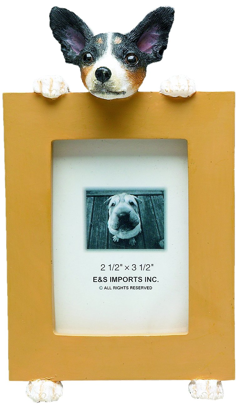 Rat Terrier Picture Frame Holds Your Favorite 2.5 by 3.5 Inch Photo Hand Painted Realistic Looking Rat Terrier Stands 6 Inches Tall Holding Beautifully Crafted Frame Unique and Special Rat Terrier Gifts for Rat Terrier Owners