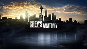 NewBrightBase Greys Anatomy TV Show Fabric Cloth Rolled Wall Poster Print - Size: (43