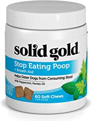 Solid Gold Stop Eating Poop for Dogs with Coprophagia; Natural, Holistic Grain-Free Supplement Chews and Powder with Peppermi