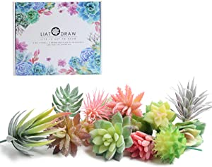 LIATODRAW Mini Artificial Succulents Plants - 14 Pcs Unpotted Faux Fake Succulent Assortment in Flocked Green forLotus Landscape Decorative Garden Arrangement Decor