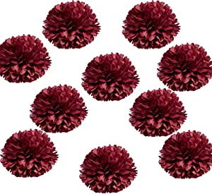 Daily Mall 10pcs 10 inch Party Pom poms Paper Pom Poms DIY Art Craft Tissue Paper Flower Decorative Flowers Hanging Paper Flower for Home Wedding Baby Shower Birthday Party Decor … (Burgundy)