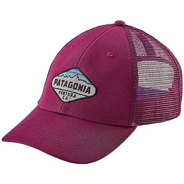 best Patagonia Unisex Fitz Roy Crest LoPro Trucker Hat reviews
