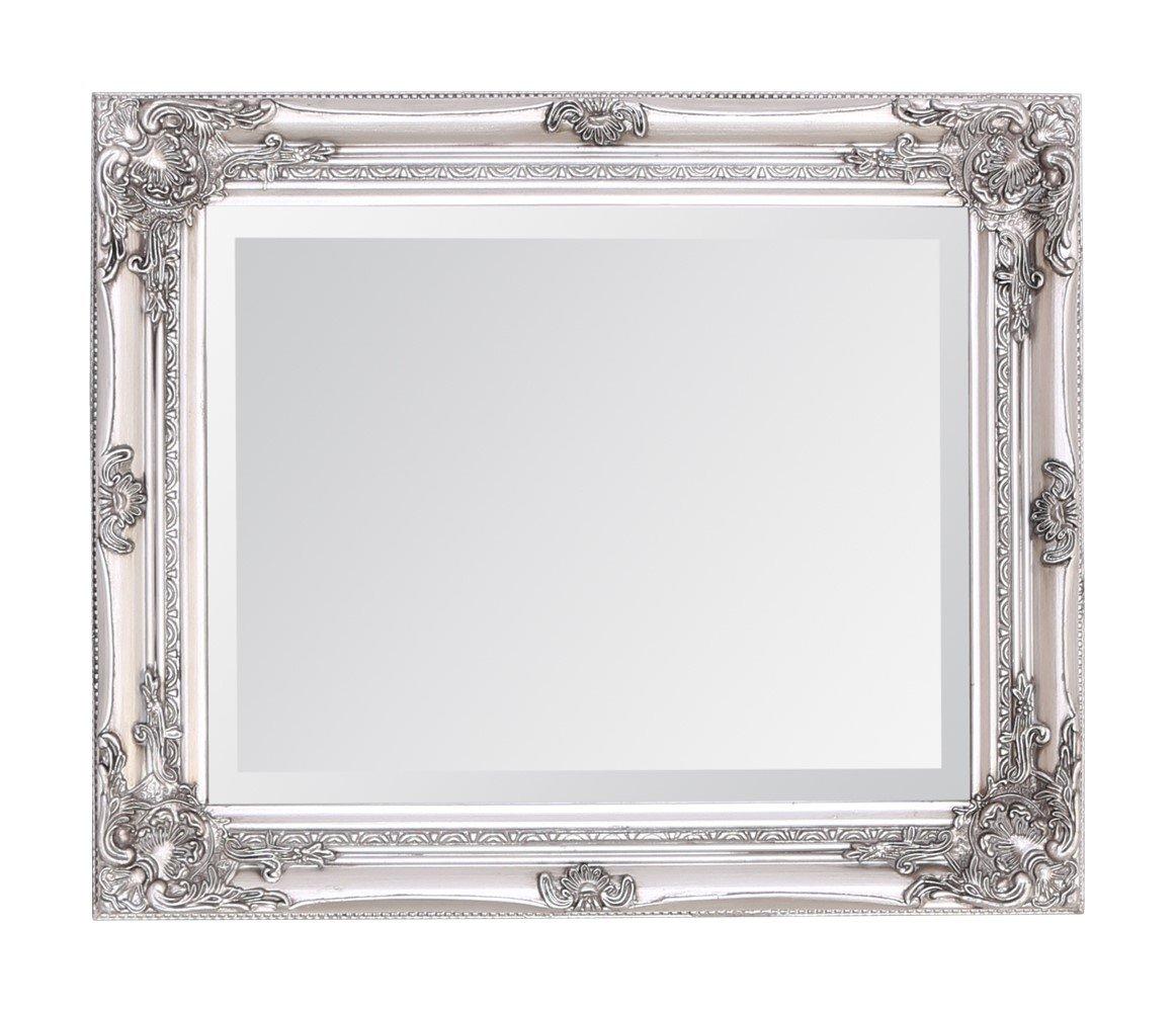 Select Mirrors Rhone - Espejo de pared (50 x 60 cm), color plateado ...