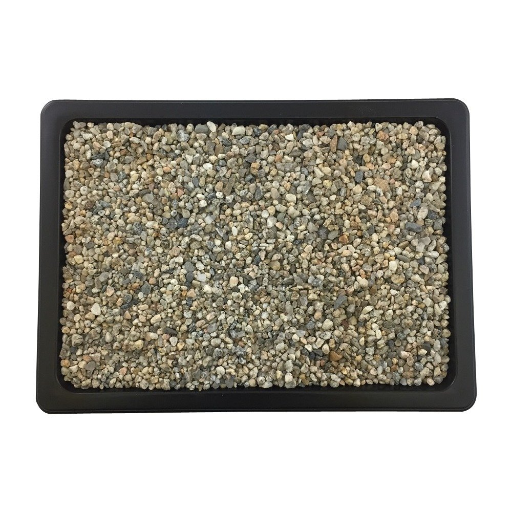 Bonsai Outlet 11 1/2'' Humidity Tray by Bonsai Outlet