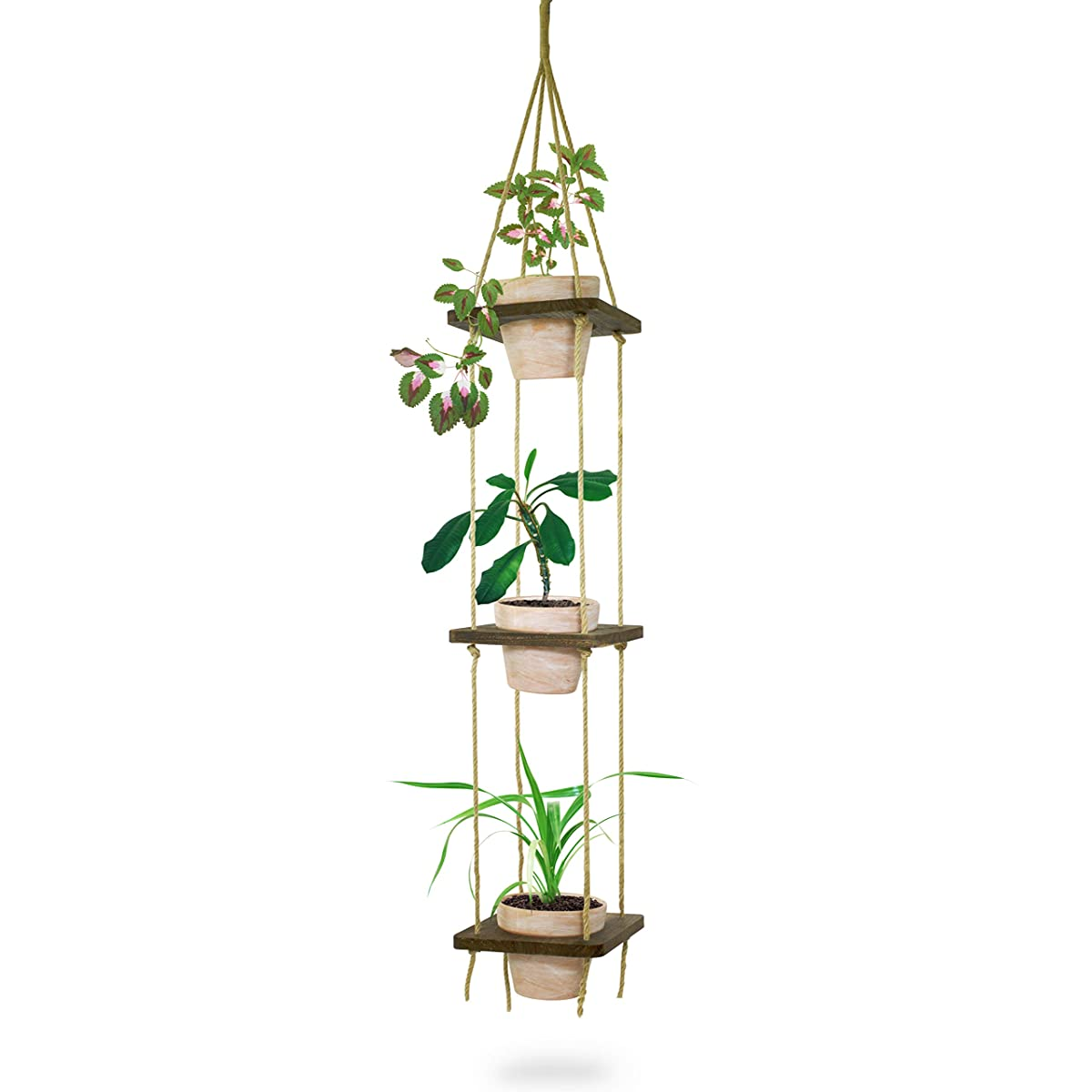 23 Bees | Macrame Hanging Planter with Terra Cotta Clay Pot | Antique Holder Shelf & Floating Shelves | Handcrafted Wood with Rope and Hanger (3 Terracotta Pots with Wooden Layers)