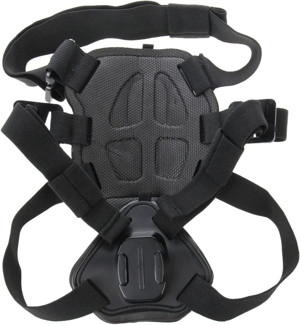 Xiaoyi and Other Action Cameras YTCYKJ Hound Dog Fetch Harness Adjustable Chest Strap Mount Compatible for GoPro New Hero //HERO7 //6//5 //5 Session //4 Session //4//3 //3//2 //1 DJI Osmo Action