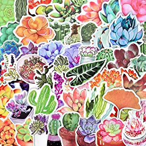 50 Pcs Cute Succulent Stickers Cactus and Succulent Plants Stickers for Laptop Water Bottles Scrapbook Bullet Journals Phone Cases Waterproof Vinyl Stickers Watercolor Cactus Planners Sticker Decals