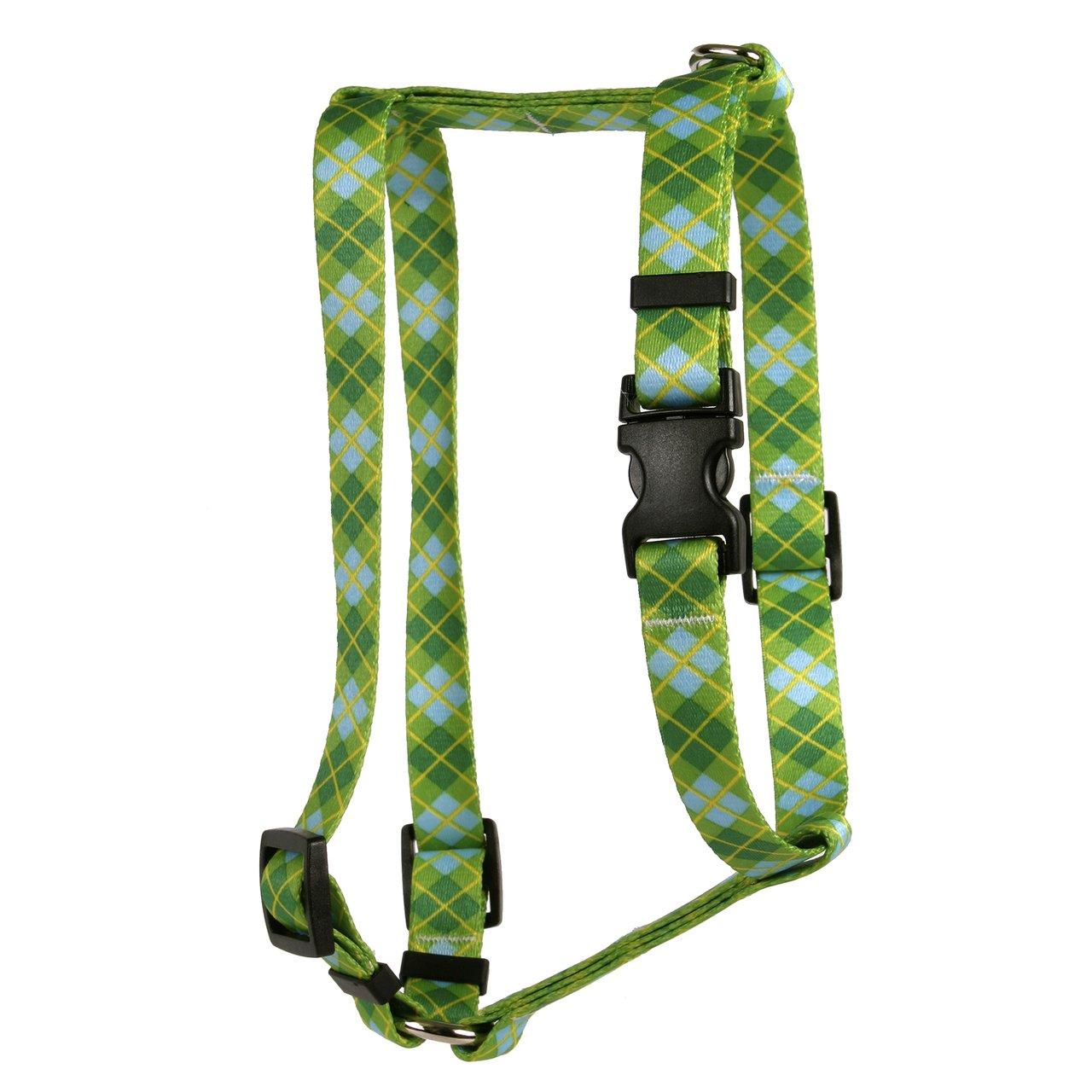 Amazon.com : Yellow Dog Design Argyle Green Roman Style H Dog ...