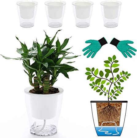 DeEFL 3 Packs 7 Inches Clear self watering Planters product image