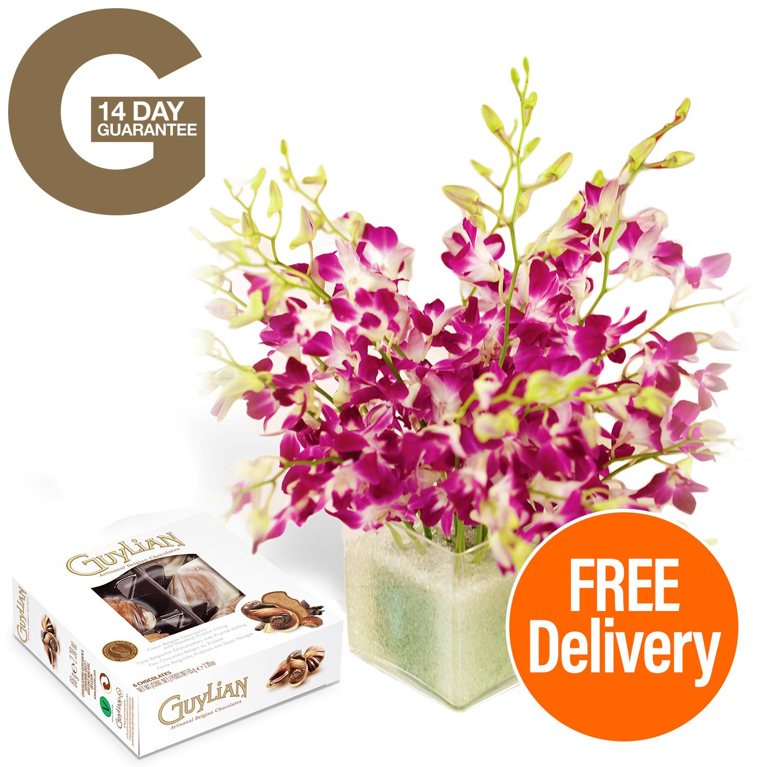 Fresh Flowers Delivered - 20 Singapore Orchids Bouquet with Chocolates, Flower Food and Bonus Ebook Guide - Perfect for birthdays, anniversaries and thank you gifts - 14 Day Guarantee Guernsey Flowers