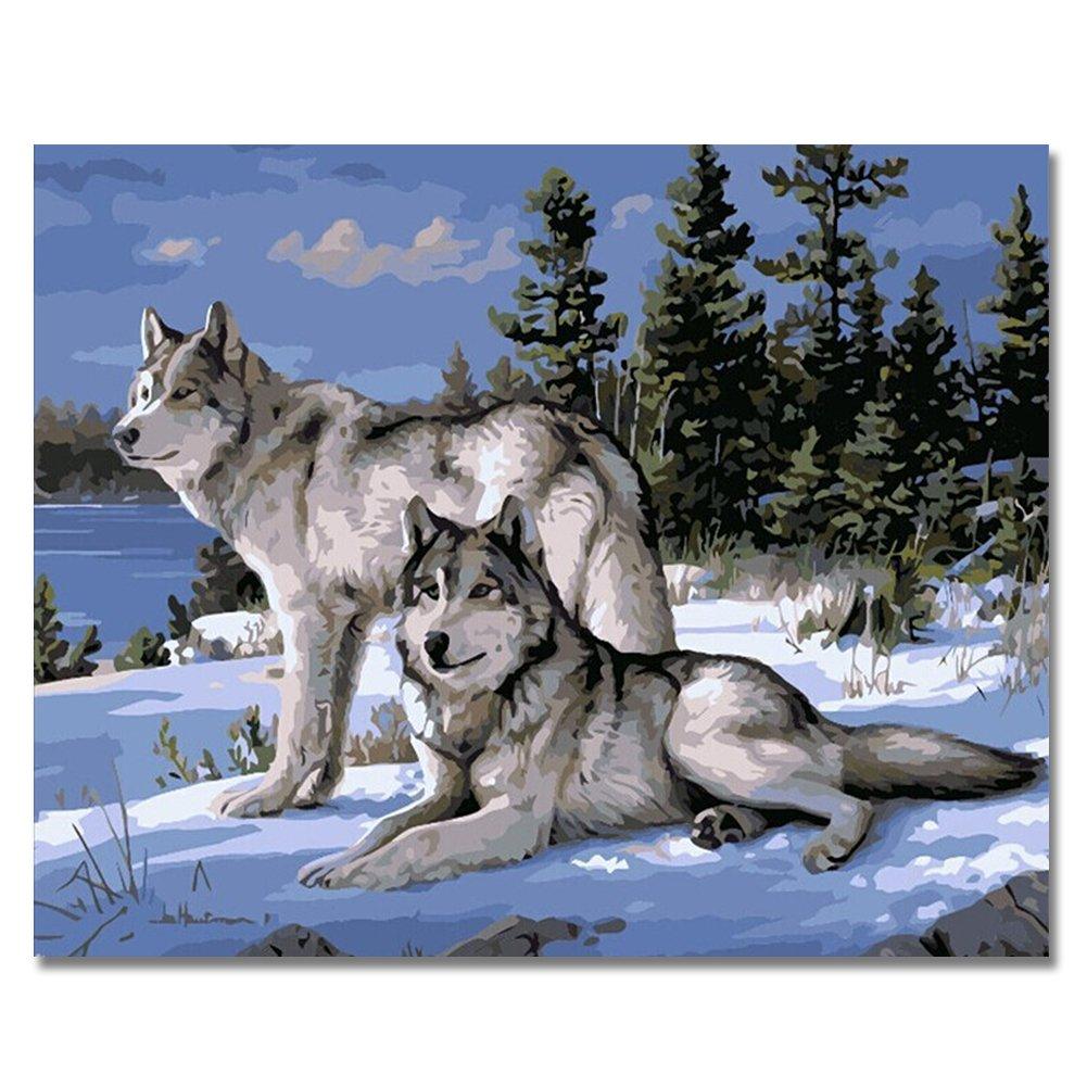 Pintura Por Numeros (18626015) Lobo 16x20