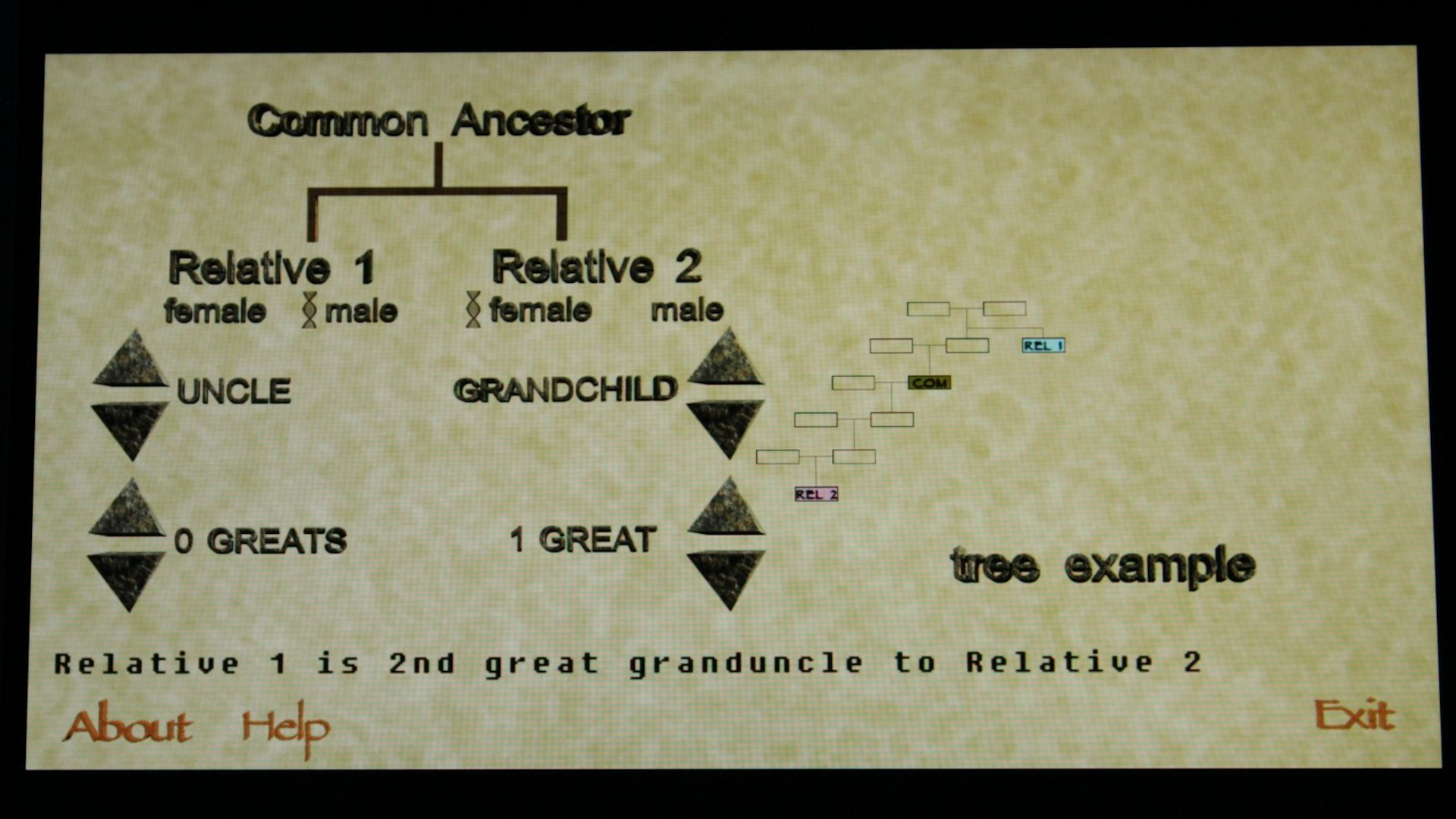 genealogy relationship