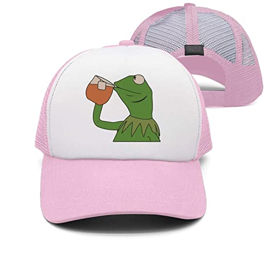 ea07a3cbea7 Image Unavailable. Image not available for. Color  SYWHPS Kermit The Frog  Dad Hat Cap Sipping Sips Drinking Tea Champion Lebron Costume