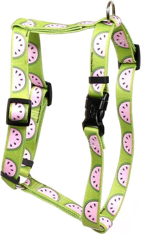 Yellow Dog Design Chevron-Watermelon Roman Style H Dog Harness