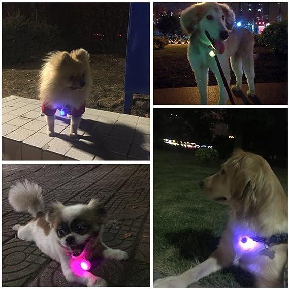Bello Luna Collar de perro con luz LED 3 piezas con clip de luz de seguridad para mascotas para gatos y perros Resistente al agua luminoso collar colgante circular