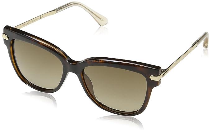 54311de01033 Jimmy Choo Women s Ara S S1 Sunglasses