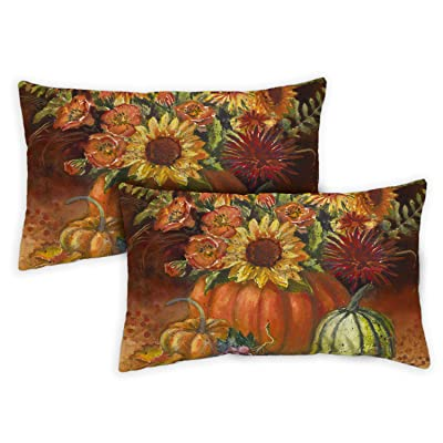 Toland Home Garden 731278 Fall Burst 12 x 19 inch Indoor/Outdoor, Pillow with Insert (2-Pack) : Garden & Outdoor