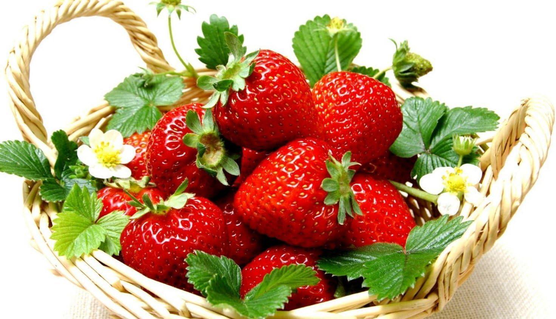 Hirt's Gardens B00U2PZJPE Everbearing Ozark Beauty Strawberry 20 Bare Root Plants