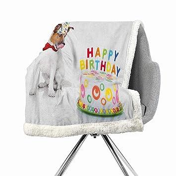 Amazon.com: Mantas de franela para cama de cumpleaños de ...