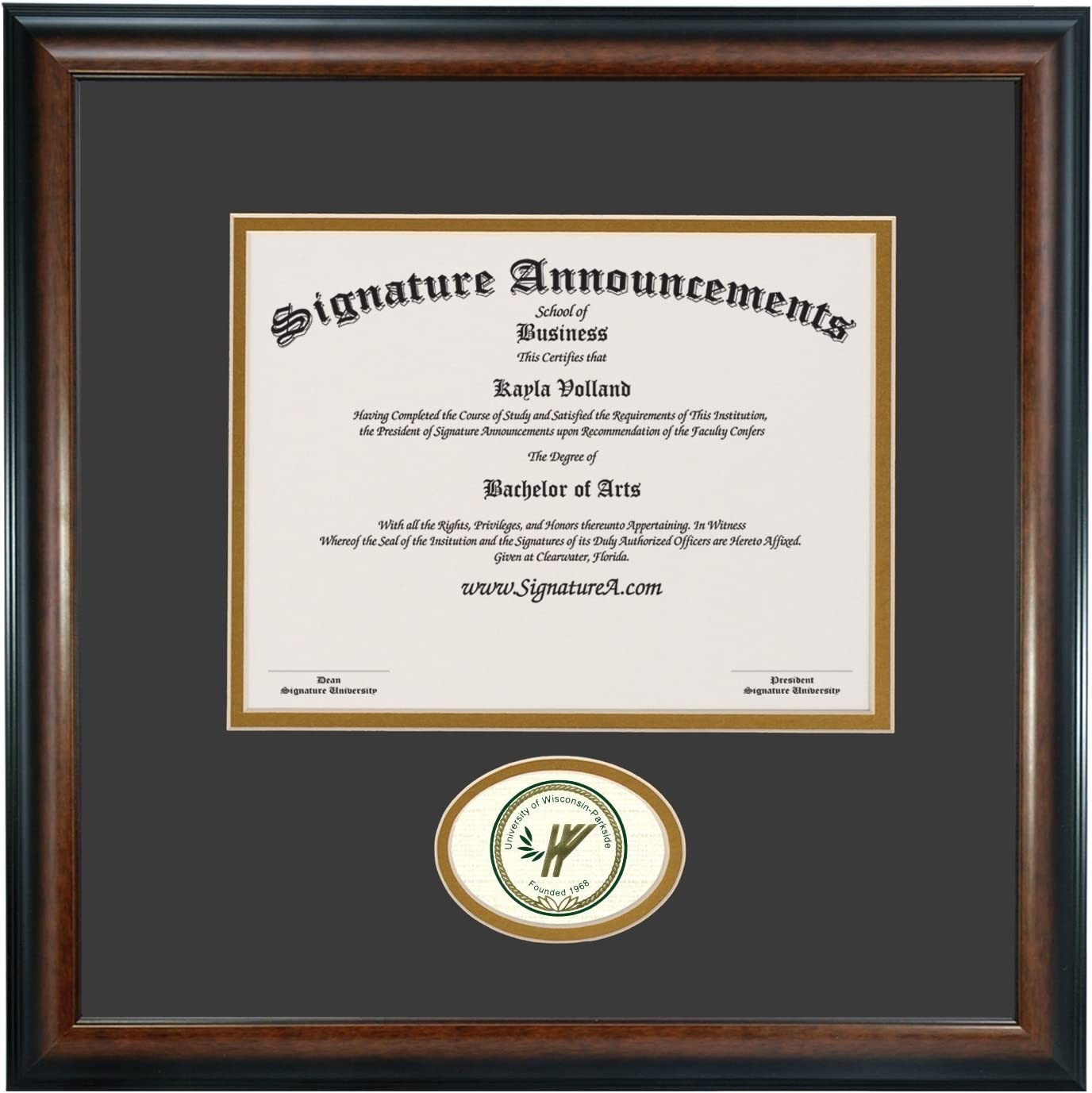 Signature Announcements University of Akron Undergraduate Matte Mahogany Sculpted Foil Seal Name /& Tassel Graduation Diploma Frame 16 x 16