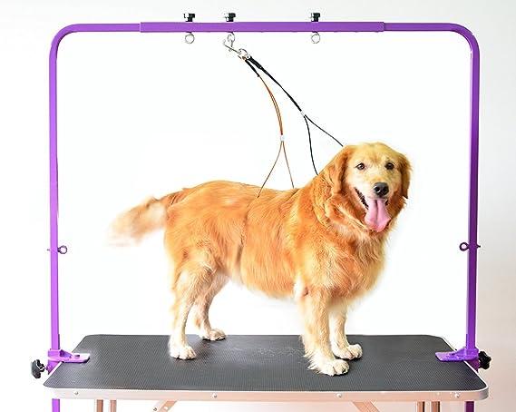 Gravitis Brazo de Aseo Ajustable para Mascotas con Abrazaderas y ...