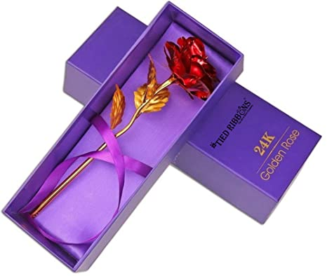 e576c923b655 Buy TIED RIBBONS Valentine s Gift for Girlfriend Boyfriend Husband Wife Him  Her 24K Gold Plated Rose Online at Low Prices in India - Amazon.in