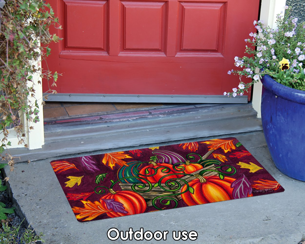 Toland Home Garden 800406 Fall Gourds Doormat 18 x 30 Multicolor