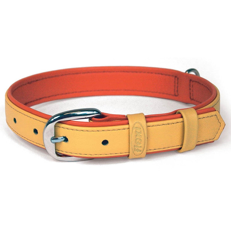 orange Large orange Large Bogdahn International Flexi Summertime 3 Pet Collar (Large) (orange)