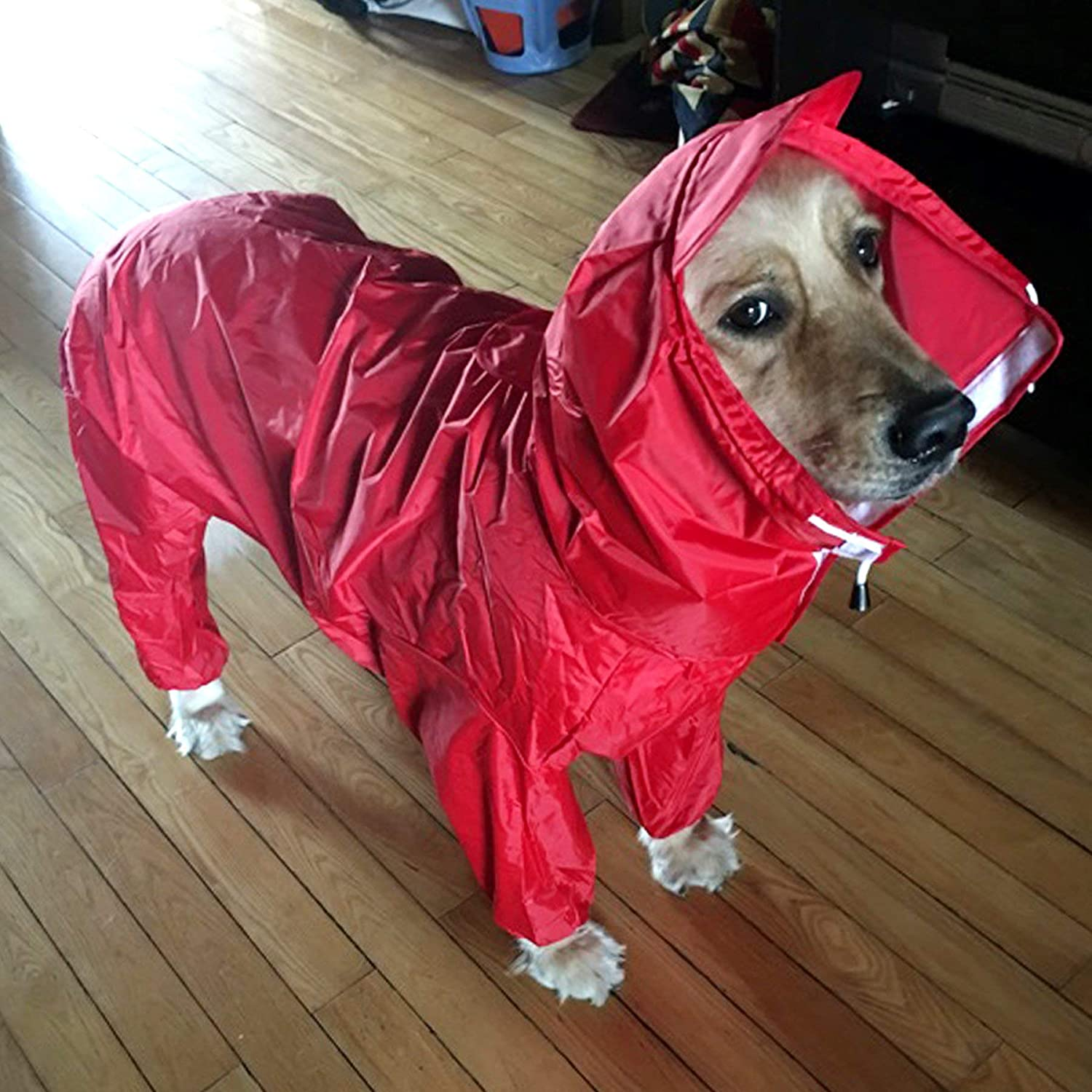 for Dogs and Cats Alfie Pet Bella Rainy Days Waterproof Raincoat