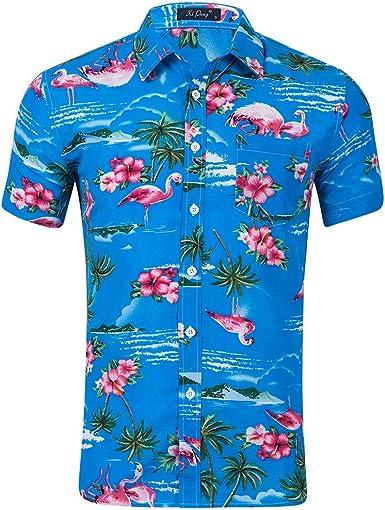 AIDEAONE Hombres Hawai Manga Corta Camisa Ropa de Playa Camisa de Botones: Amazon.es: Ropa y accesorios