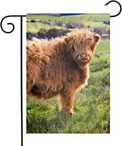 Funny Highland Cow Garden Flags Home Indoor & Outdoor Holiday Decorations,Waterproof Polyester Yard Decorative for Game Family Party Banner