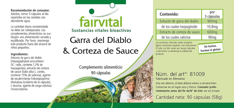 Garra del Diablo y Corteza de Sauce - VEGANO - 90 cápsulas - 1,2% y 15% harpagosidos salicina - Harpagofito - ¡Calidad Alemana garantizada!: