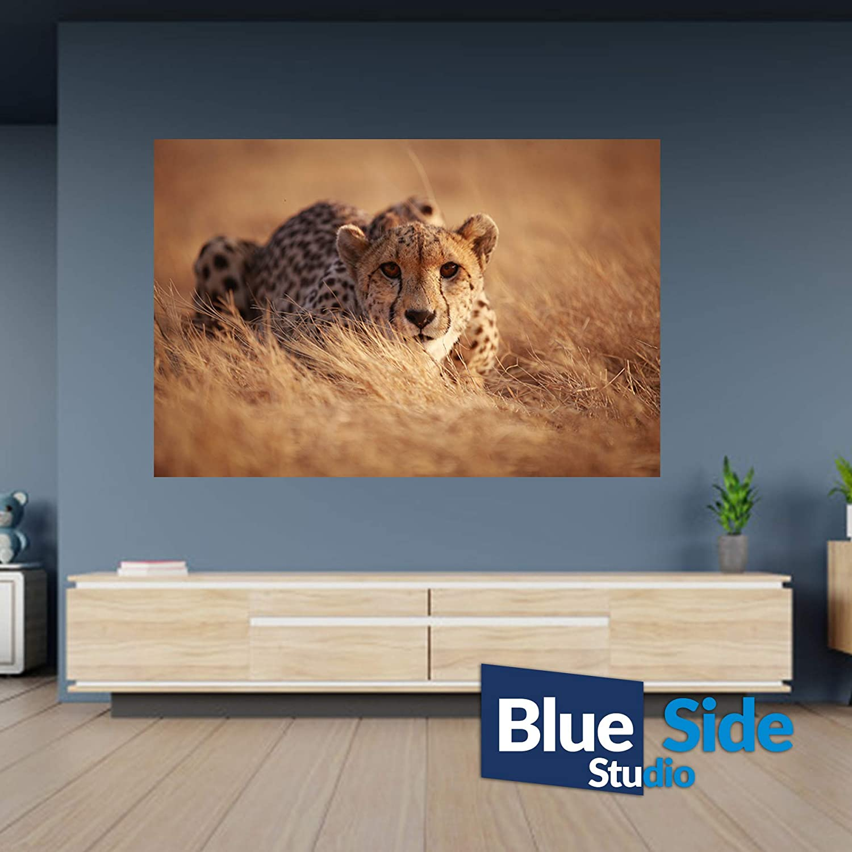 105cm x 69cm P/óster de guepardo en campo de la naturaleza autoadhesivo mural