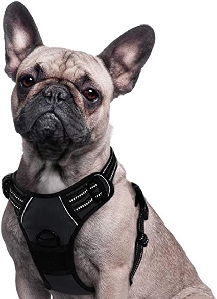 No Pull Dog Harness Soft Breathable Adjustable Harnesses Vest Safety Seat Belt Trip Lightweight Dog Harness for Small Medium Large Dogs BLACK S