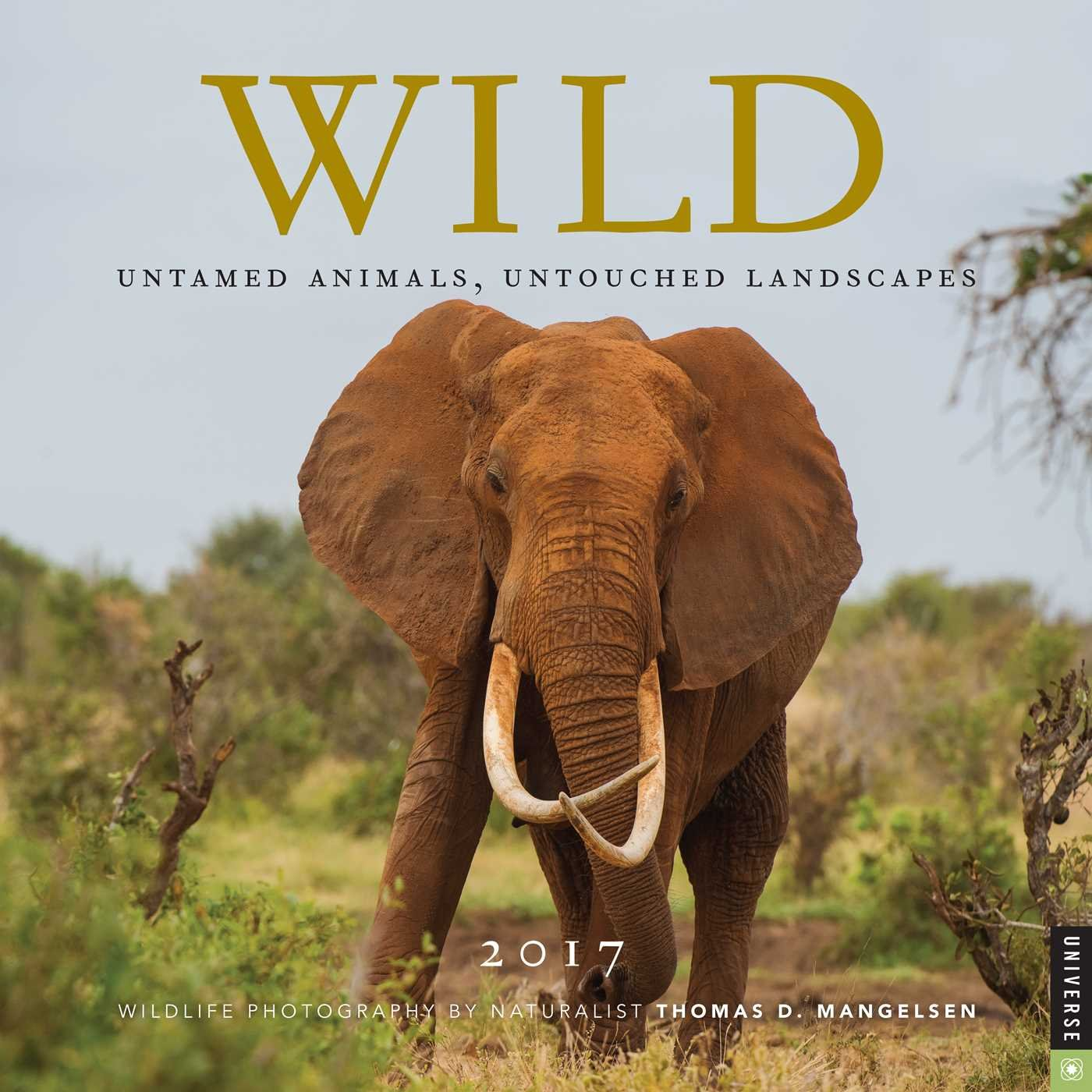 Wild 2017 Wall Calendar Landscapes product image